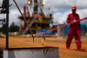 petroleovenezuela